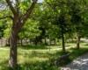 Verde pubblico a Solofra 2